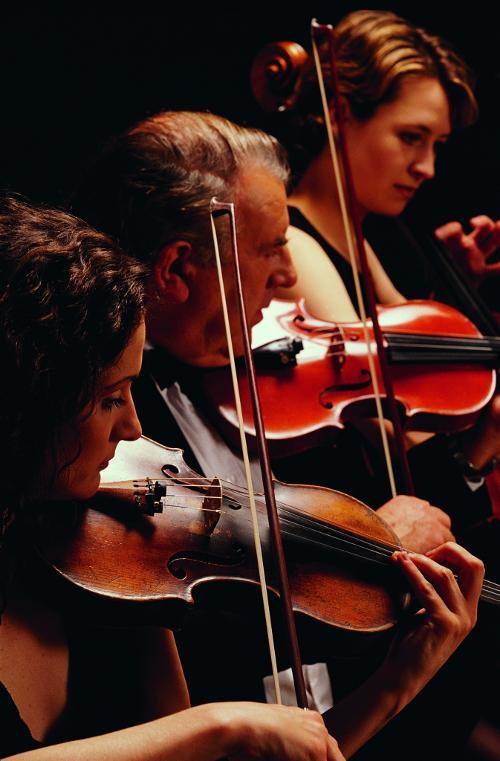 有一首英文歌开头的音乐是小提琴,然后是1234