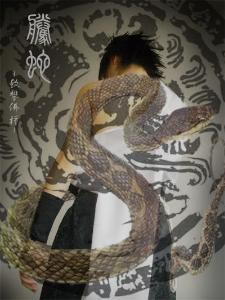 腾蛇和白曦原形图片
