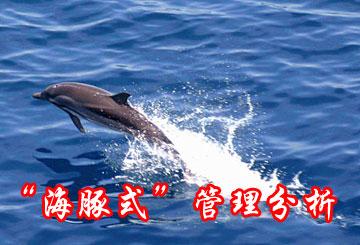 """海豚式管理是指管理者在实施管理行为的过程中,从强调""""人的关系""""和"""""""