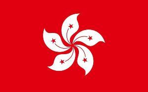 飘扬的中国国旗简笔画