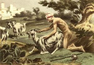 如果一个男人和马或驴却不会被惩罚