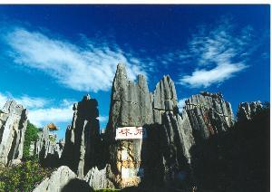 云南石林图片高清图片