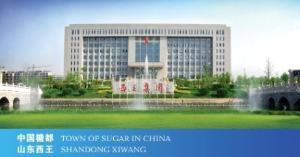 西王糖业有限公司 - 搜搜百科