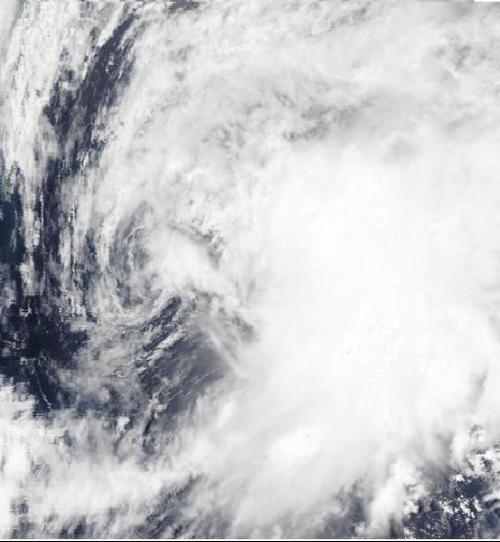 2010年太平洋台风季
