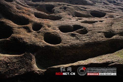滑坡地貌结构示意图