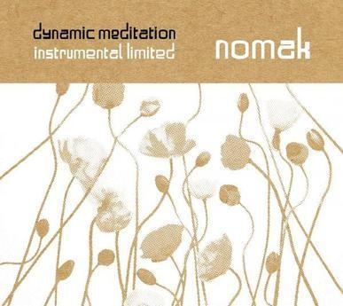 nomak never lost control mp3