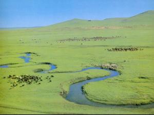 内蒙古高原
