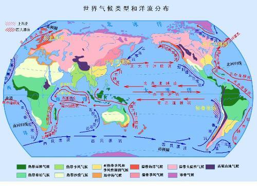 各国森林数据分析图