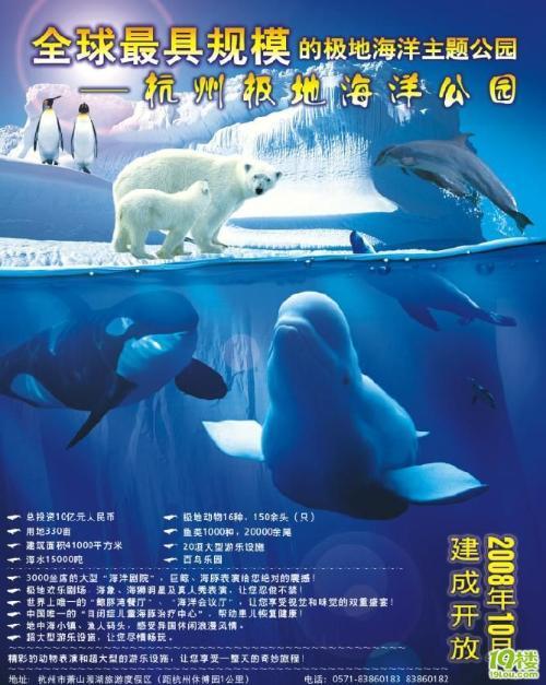 杭州极地海洋公园,是集极地动物展示(鲸类动物展示品种最多),极地