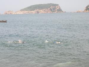 崆峒岛图片