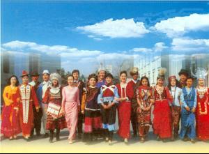 中国各少数民族人口_少数民族 公祭 中国人口