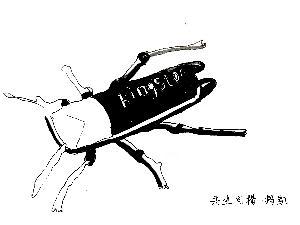共生同构-共生同构图形动物;;图片