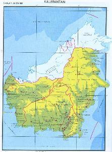 加里曼丹岛人口密集的原因_密集恐惧症图片