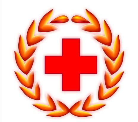 中国红十字会总会由国务院领导联系