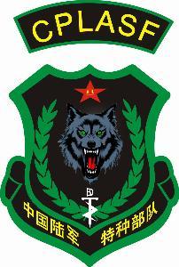 黑特种兵道中的纹身图案_特种兵臂章纹身图片内容图片分享