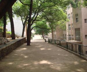 湖南邵阳第六中学图片