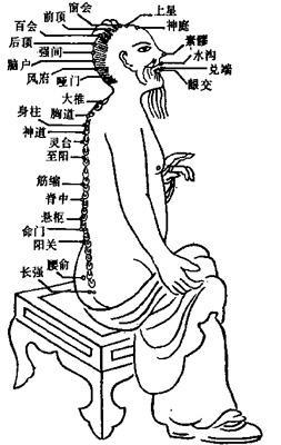 古代任脉矢量图