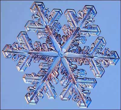 雪花形状的多种多样,则与它形成时的水汽条件有密切的关系.
