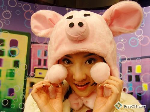 你是可爱猪头图片