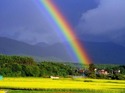 彩虹(雨后光学现象) - 搜狗百科 '); // --> 新闻 网页 微信 知乎