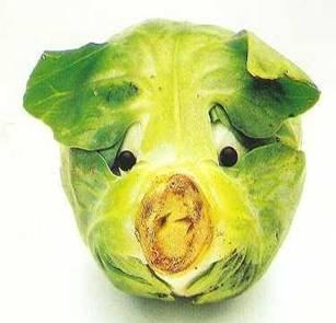 猪头起床图片可爱