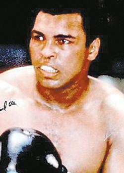 在阿里的职业拳击生涯中图片