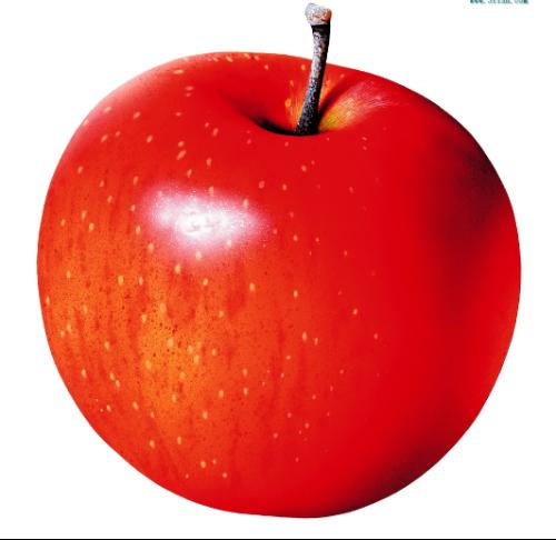苹果,落叶乔木,叶子椭   圆形   ,花白色带有红晕.   果实 ...