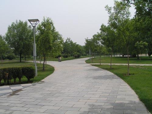 圆形广场地面铺装手绘