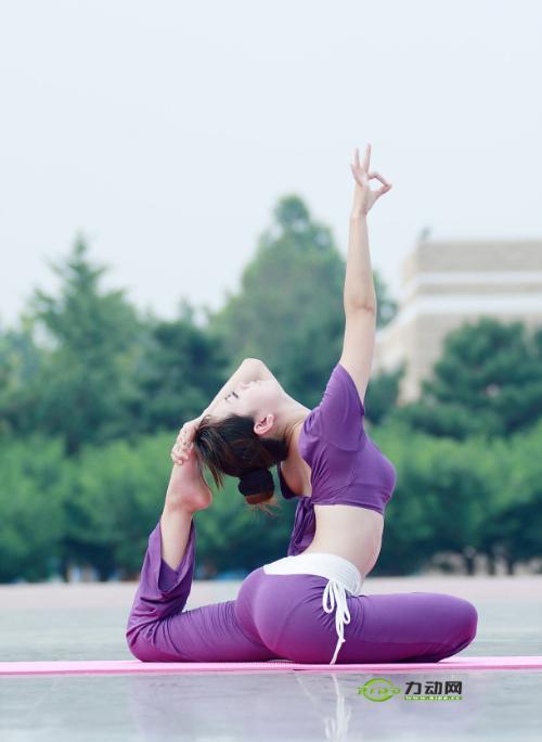 瑜伽 瑜伽 是 生理 上 的 动态 运动 及 心灵 上 的