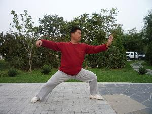 北京大学杨式太极拳协会图片