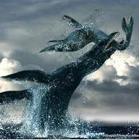 巨海视频-百科女子章鱼吃搜狗鸽子播放图片