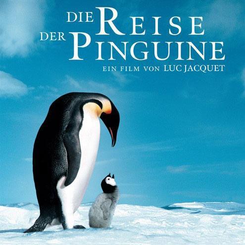 企鹅是一种可爱的动物