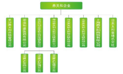 连锁饭店组织结构