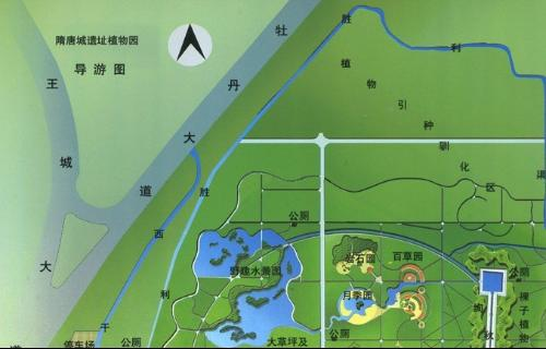 洛阳市隋唐城遗址植物园