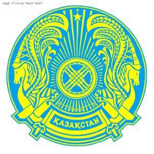 为 哈萨克传统 的金色 花纹
