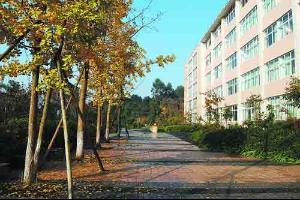 全部版本 最新版本  乐山师范学院始建于1978年,是一所省属本科师范图片