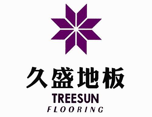 地板大致可分为六大类:实木地板,实木复合地板,负离子木地板,自然山水