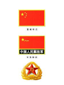 中国人民解放军 07式臂章