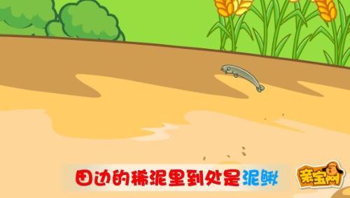 歌曲捉泥鳅 幼儿歌曲捉泥鳅 儿童歌曲捉泥鳅-幼儿歌曲萤火虫曲谱
