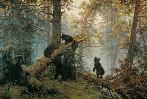 几只活泼可爱的小熊在母熊的