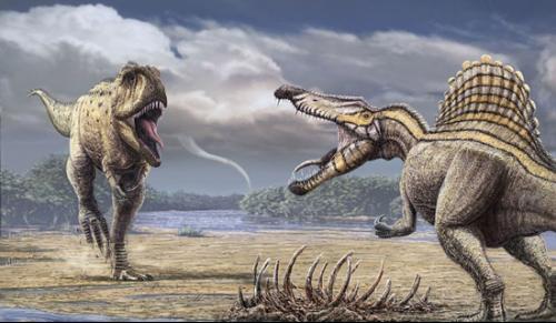 恐龙体长: 8—14米长
