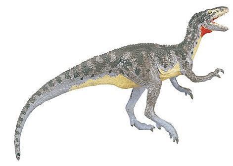 动物 恐龙 471_336