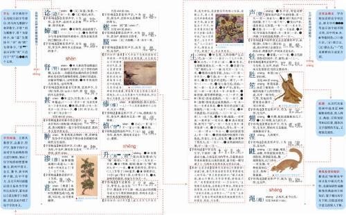 新华大字典哪里买卖比较好的 新华字典11版大