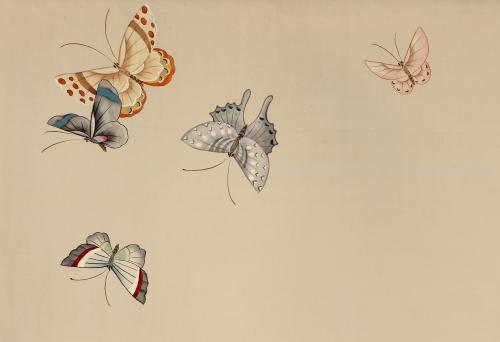 手绘丝绸壁纸 壁画 蝴蝶图