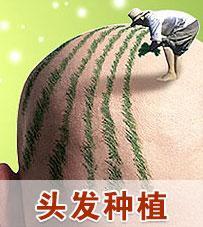 植发fut技术伤神经吗