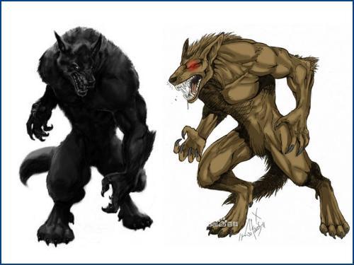 复仇者联盟卡通狼人