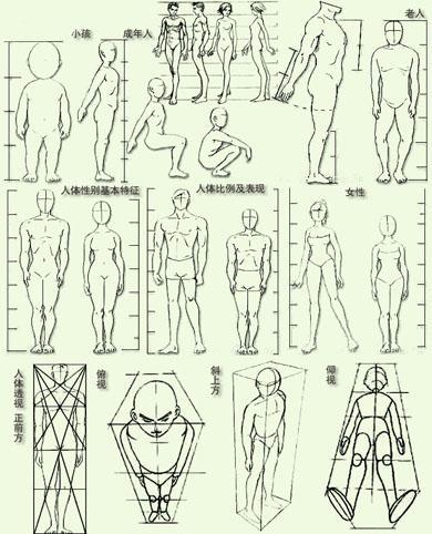 动漫人物身体比例教程