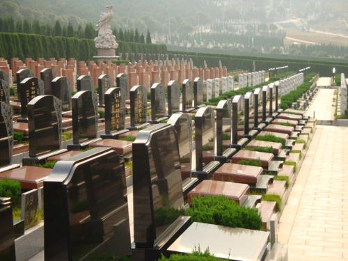 公墓v公墓图纸扩景观初尺寸图片