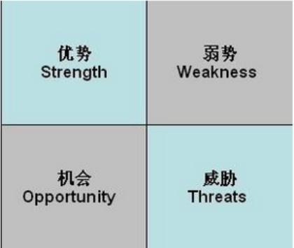 其中战略内部因素(