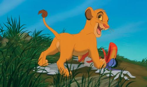 狮子王的剧照
